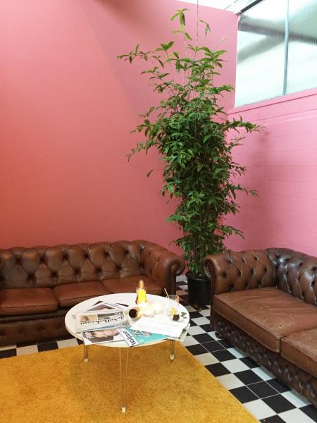 De School Amsterdam cafe