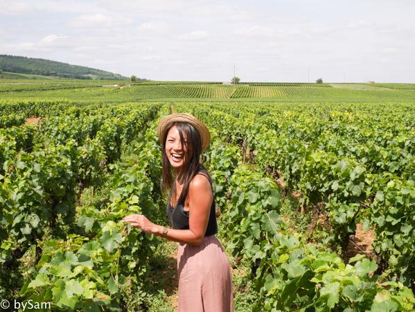 Wijnproeven Bourgogne