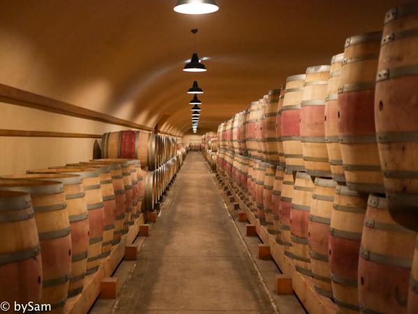 wijnkelder louis jadot