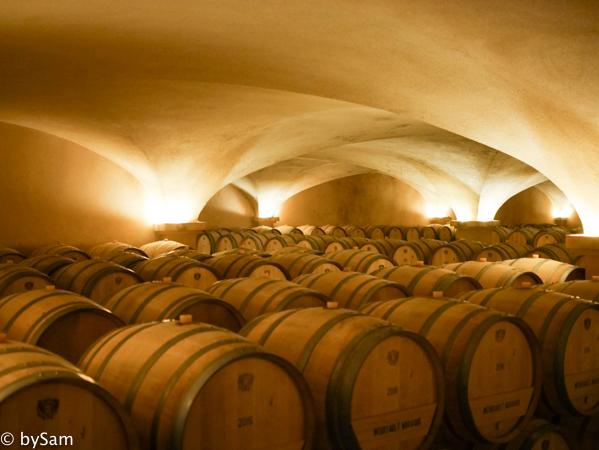 wine cellar louis jadot beaune