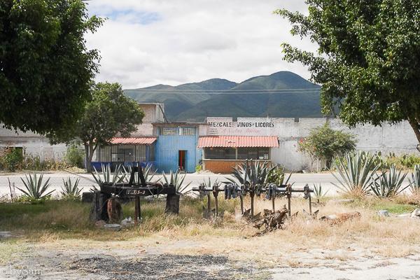 Mexico Matatlan Oaxaca