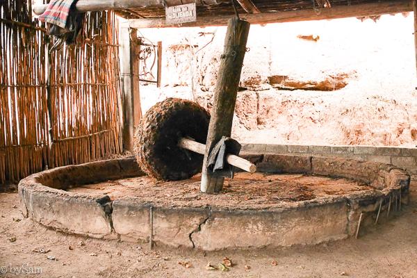 Mezcal tour Mexico Oaxaca